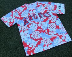 hawaiian_shirt_promo